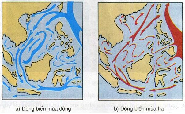 Hình 24.3. Lược đồ dòng biển theo mùa trên Biển Đông, lớp 8