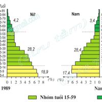 Bài 5. Thực hành: Phân tích và so sánh tháp dân số năm 1989 và năm 1999 (Địa lý 9)