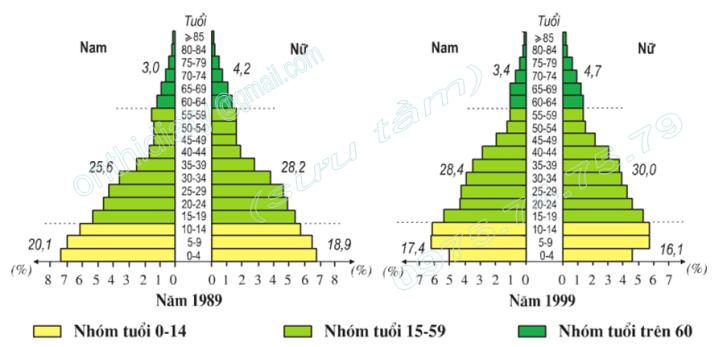 Hình 5.1.Tháp dân số Việt Nam năm 1989 và năm 1999, trang 18, lop 9