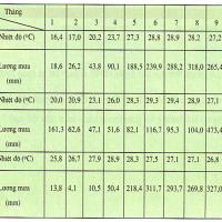 Bài 31. Đặc điểm khí hậu Việt Nam (Địa lý 8)