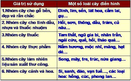 Bảng 38.1. Một số tài nguyên thực vật Việt Nam, trang 133, lớp 8