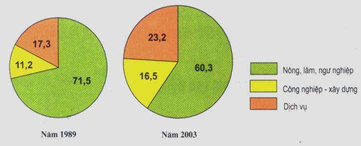 Hình 4.2. Biểu đồ cơ cấu sử dụng lao động theo ngành năm 1989 và 2003, lop 9