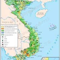 Bài 8. Sự phát triển và phân bố nông nghiệp (Địa lý 9)