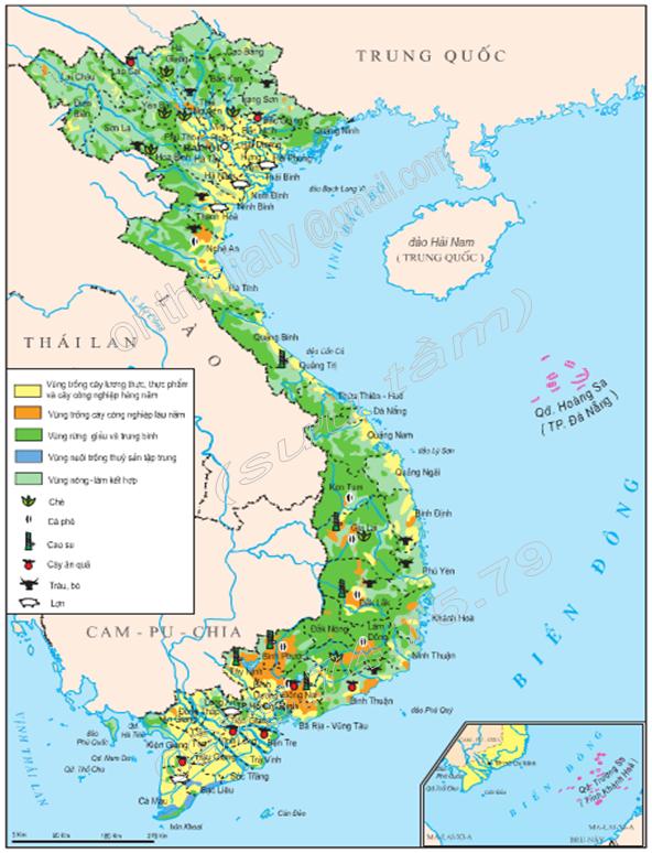 Hình 8.2. Lược đồ nông nghiệp Việt Nam