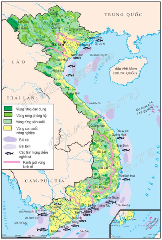Hình 9.2. Lược đồ lâm nghiệp và thủy sản Việt Nam, lop 9