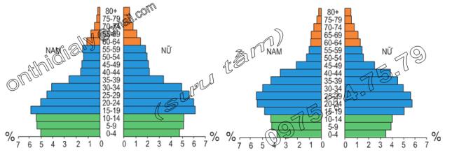 Hinh 4.2 và 4.3. Tháp tuổi Thành phố Hồ Chí Minh năm 1989 và năm 1999