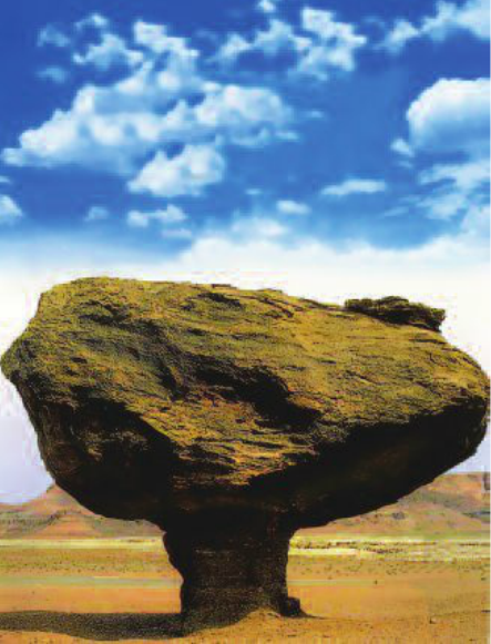 Hinh 9.5. Nấm đá