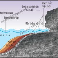 Bài 9. Tác động của ngoại lực đến địa hình bề mặt trái đất (tiếp theo) (Địa lý 10)