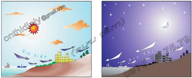 Hinh 12.4. Gió biển và gió đất
