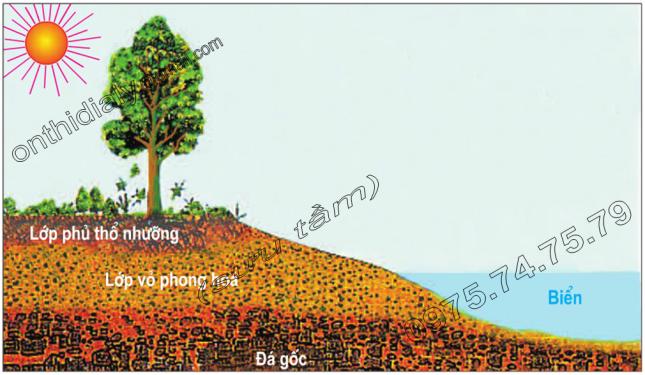 Hinh 17. Vị trí lớp phủ thổ nhưỡng ở lục địa