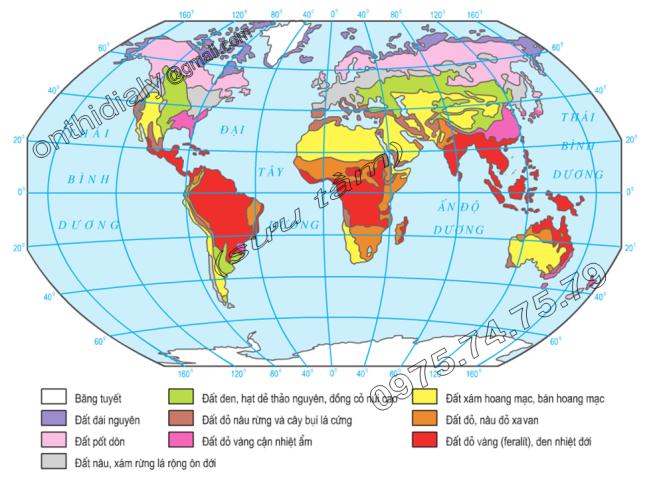 Hinh 19.2. Các nhóm đất trên thế giới
