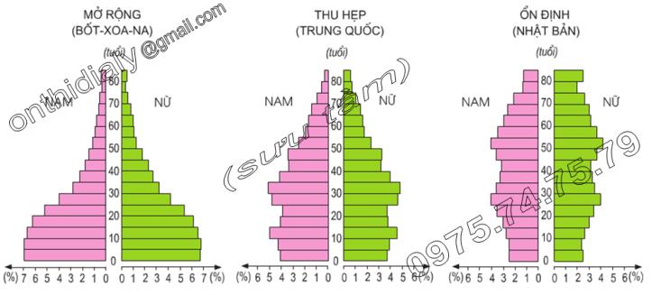Hinh 23.1. Các kiểu tháp dân số cơ bản
