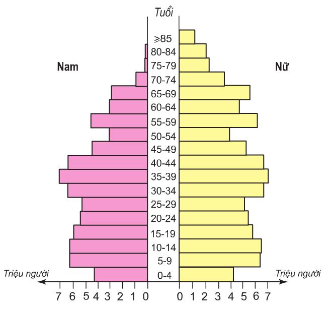 Hinh 8.3. Tháp dân số Liên Bang Nga, năm 2001