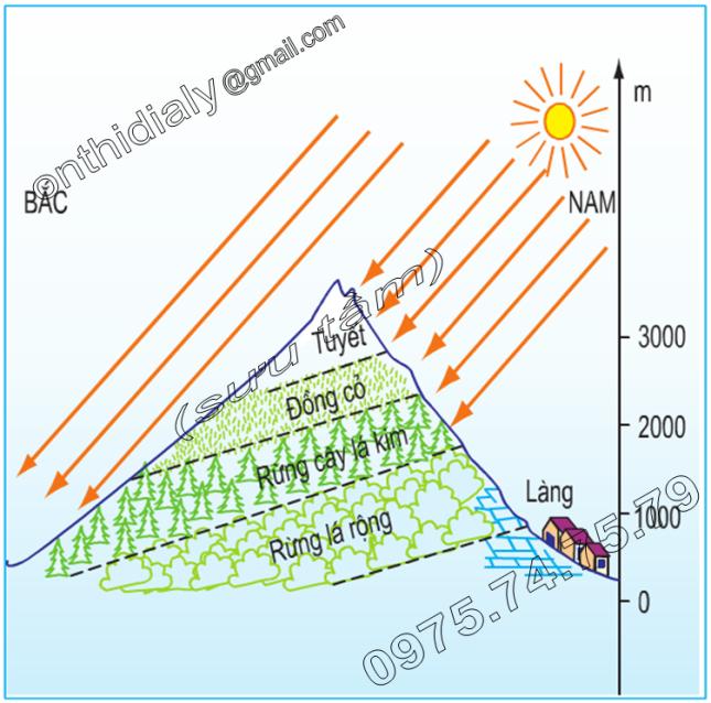 Hinh 23.2. Sơ đồ phân tầng thực vật theo độ cao ở dãy núi An-pơ thuộc châu Âu
