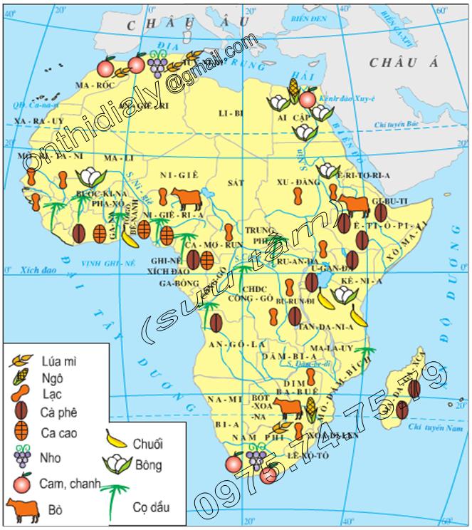 Hinh 30.1. Lược đồ nông nghiệp châu Phi