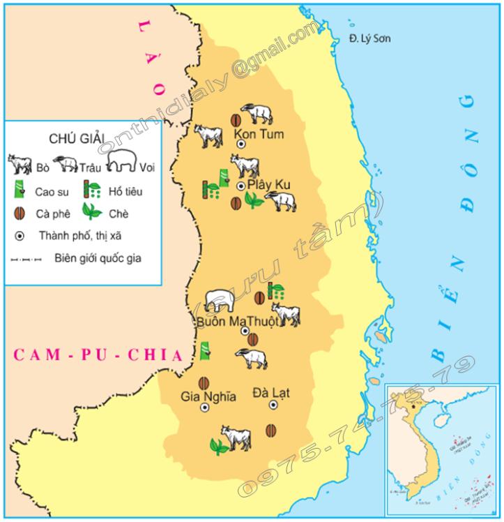 Hinh 1. Lược đồ một số cây trồng và vật nuôi chính ở Tây Nguyên