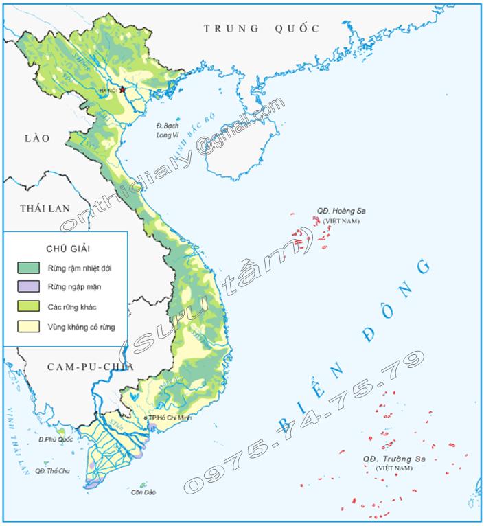Hinh 1. Lược đồ phân bố rừng ở Việt Nam