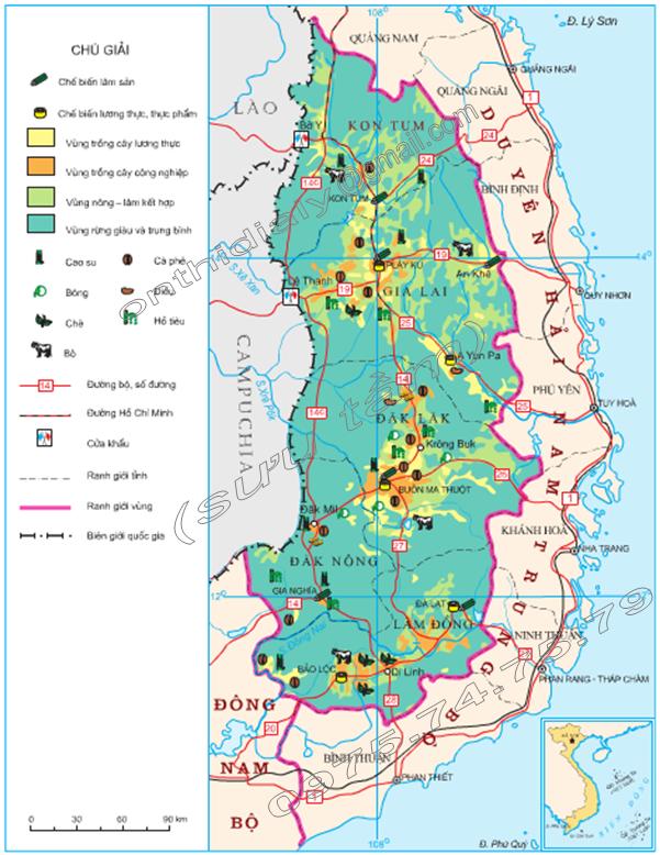 Hinh 37.1. Khai thác một số thế mạnh chủ yếu về nông, lâm nghiệp ở Tây Nguyên