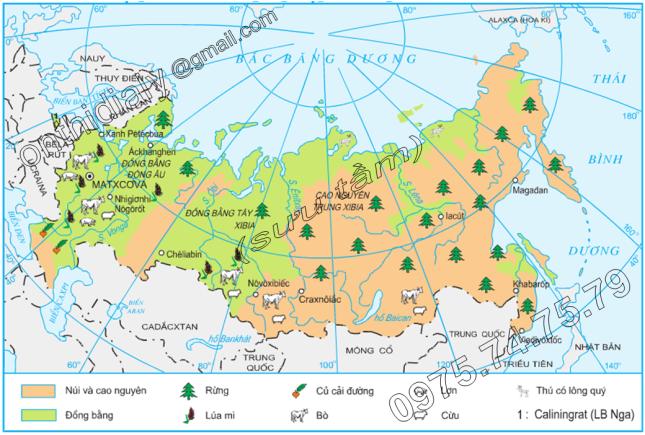 Hinh 8.10. Phân bố sản xuất nông nghiệp Liên Bang Nga