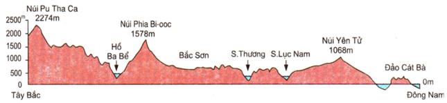 Hình 41.2. Lát cắt địa hình hướng Tây Bắc-Đông Nam từ núi Pu Tha Ca tới đảo Cát Bà, lop 8