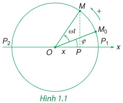 Hình 1.1 (Vật lý 12)