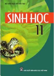 Bìa SGK Sinh học 11