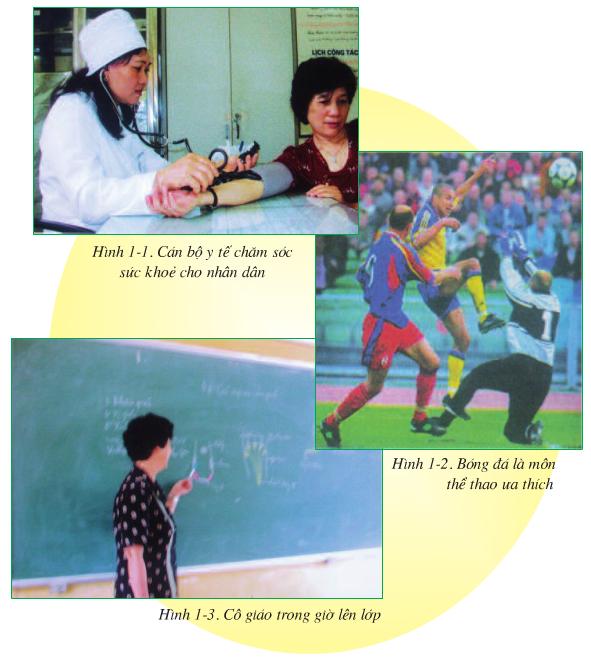 Hình 1.1, 1.2 và 1.3 (Sinh 8)